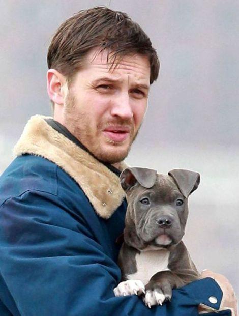 tom-hardy-puppy-set